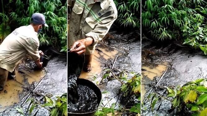 Ước tính dung tích dầu thải đổ trộm khoảng 10m3.