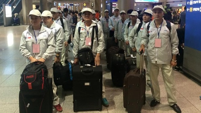 Người Việt Nam đi xuất khẩu lao động tại Hàn Quốc. Ảnh minh họa: Bộ LĐTB&XH