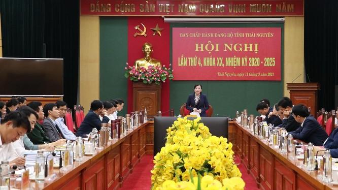 Bà Nguyễn Thanh Hải - Ủy viên Ban Chấp hành Trung ương Đảng, Bí thư Tỉnh ủy, Trưởng Đoàn ĐBQH tỉnh Thái Nguyên phát biểu chỉ đạo tại hội nghị.