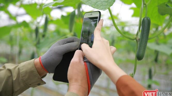 Nông dân được hỗ trợ tiếp cận nền tảng kinh doanh số.