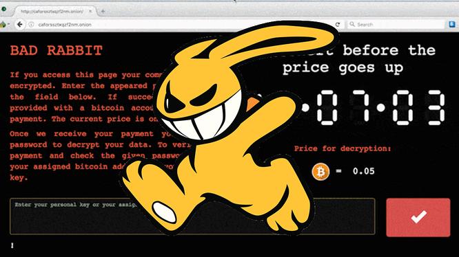 """Có tên là """"Bad Rabbit"""", mã độc này là minh chứng mới nhất cho thấy tội phạm mạng đang dùng ransomware để moi tiền từ các nạn nhân trên toàn cầu. (Ảnh: CNN)"""