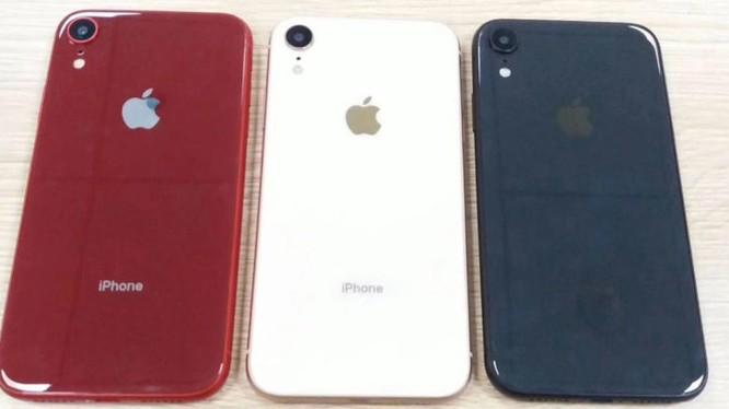 iPhone XC sẽ có 1 camera phía sau, khung nhôm, màn hình LCD