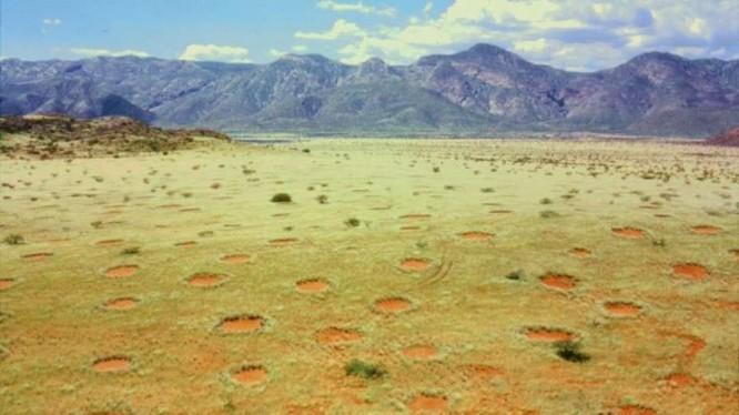 Những hình tròn được phân bố đồng đều khắp vùng Namib, Namibia (Ảnh: OC)