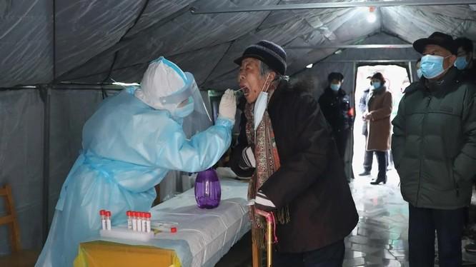 Nhân viên y tế lấy mẫu xét nghiệm cho người dân ở Thạch Gia Trang, Hà Bắc, Trung Quốc (Ảnh: Tân Hoa Xã)