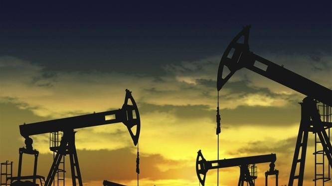 Giá dầu thô hiện ở mức thấp nhất trong 13 năm qua. (Ảnh: Benzinga)