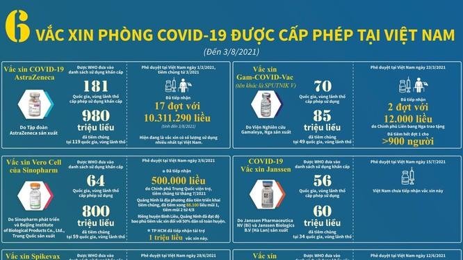 6 loại vaccine phòng COVID-19 được Bộ Y tế cấp phép (Ảnh - BYT)