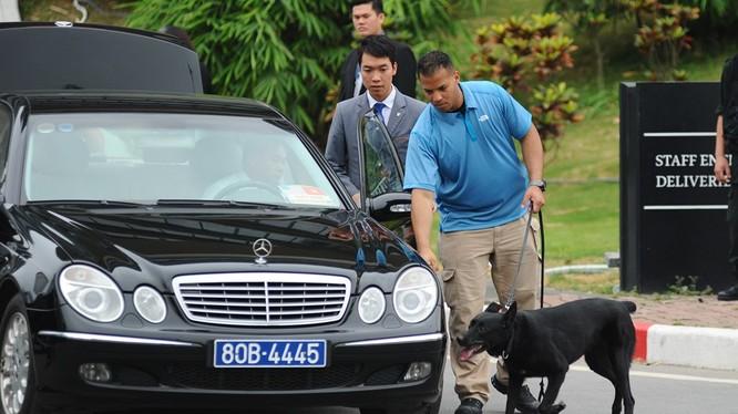 Chó nghiệp vụ Mỹ đánh hơi, phát hiện những thiết bị khả nghi đảm bải an ninh cho phái đoàn quan chức cao cấp của Hoa Kỳ tại Hà Nội.