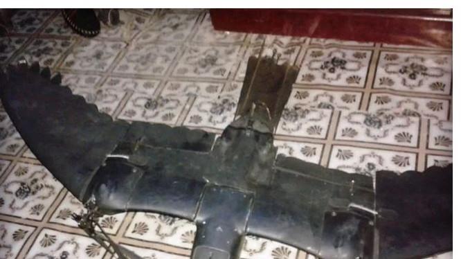 Máy bay không người lái giống hệt chim bị bắn hạ ở Somalia