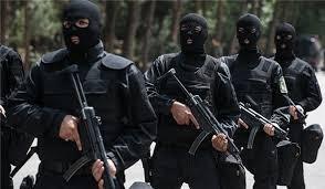 Cảnh sát đặc nhiệm Iran (ảnh minh họa)