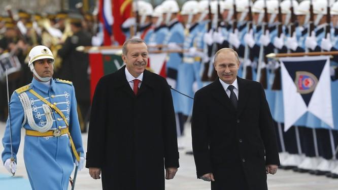 Erdogan muốn gặp Putin vào giữa tháng 8 tới.