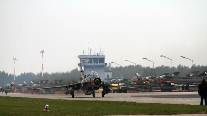 Không quân Ba Lan (ảnh minh họa)
