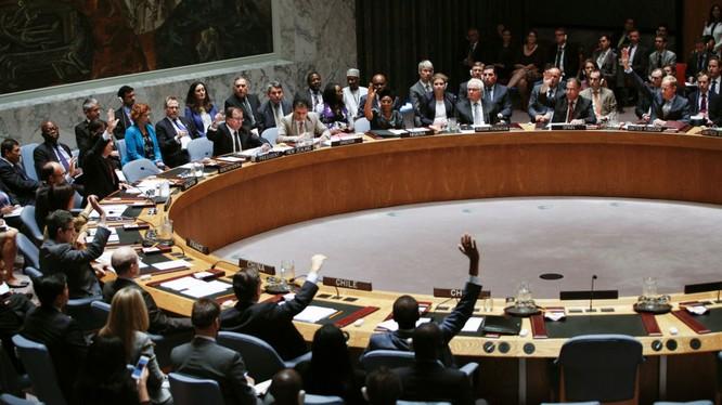 Ucraine kêu gọi tước quyền phủ quyết của Nga trong Hội đồng Bảo an