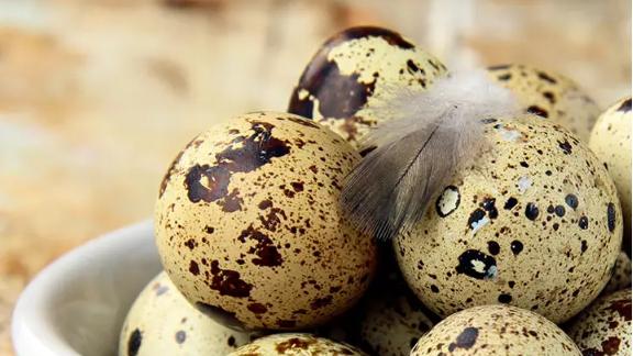 Trứng cút chứa nguồn dinh dưỡng tuyệt vời. Ảnh: Stylecraze
