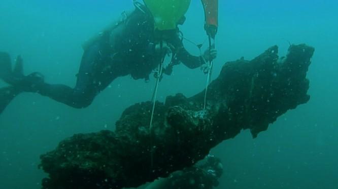 Các nhà khoa học mang những khúc gỗ lên bờ để phân tích. Ảnh: Ben Raines