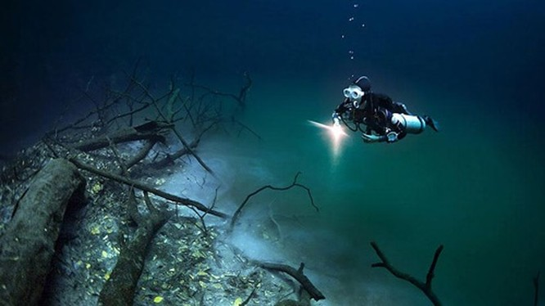 Con sông ngầm Cenote Angelita nằm dưới lòng đại dương thuộc bán đảo Yucatan (Mexico). Ảnh: Boredpanda