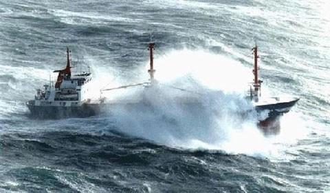 Nhiều hãng vận tải biển tiếp tục lỗ nặng