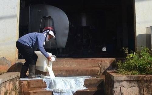 """""""Ba lựa chọn trên cũng cho thấy thị trường sữa Việt Nam phải được chuẩn hóa và điều tiết"""""""