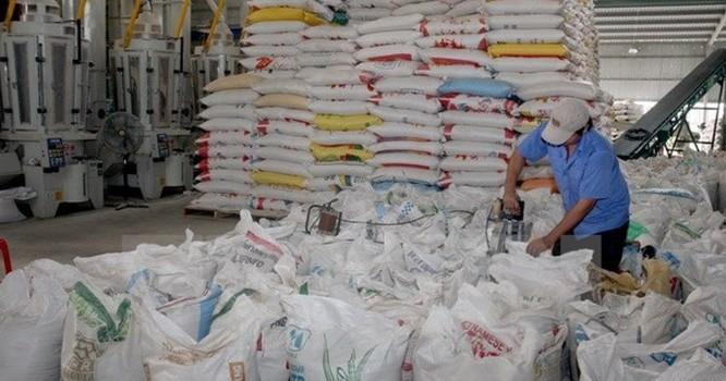 Chế biến gạo xuất khẩu tại Xí nghiệp chế biến lương thực cao cấp Tân Túc, Bình Chánh, TP. Hồ Chí Minh