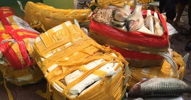 Cá trắm, ba ba Trung Quốc từ biên giới tuồn về Hà Nội tiêu thụ