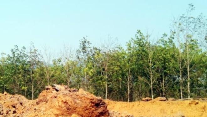 Trục xuất các thương lái Trung Quốc thu mua trái phép quặng sắt