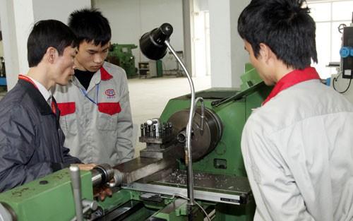 Tổng quan chất lượng nguồn nhân lực tại Việt Nam