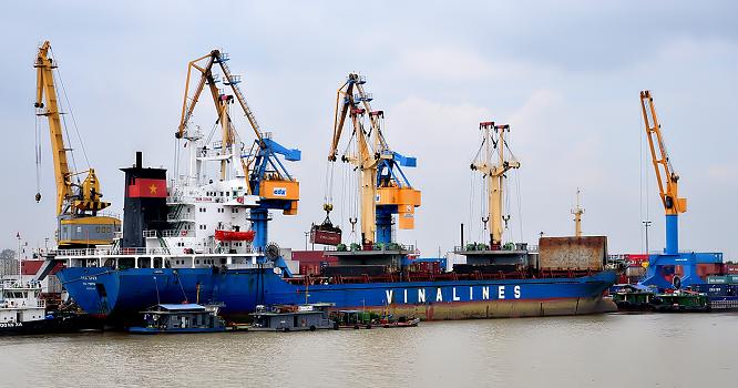 Đội tàu Vinalines đang chủ yếu cho thuê định hạn, thị phần vận chuyển hàng nội địa và hàng xuất nhập khẩu chiếm tỷ lệ rất thấp