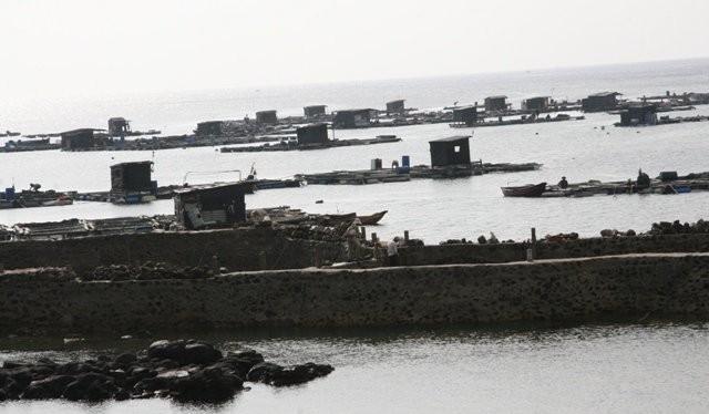 Người dân ở đảo Phú Quý (Bình Thuận) nuôi hải sản trên biển.