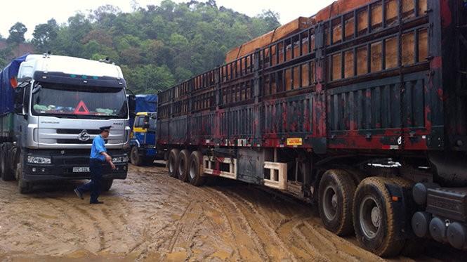 Xe chở gỗ quá tải bị chặn bắt ở Nghệ An