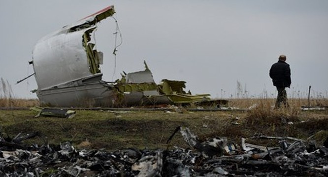 Hiện trường vụ thảm họa máy bay MH-17. (Ảnh: Sputnik)