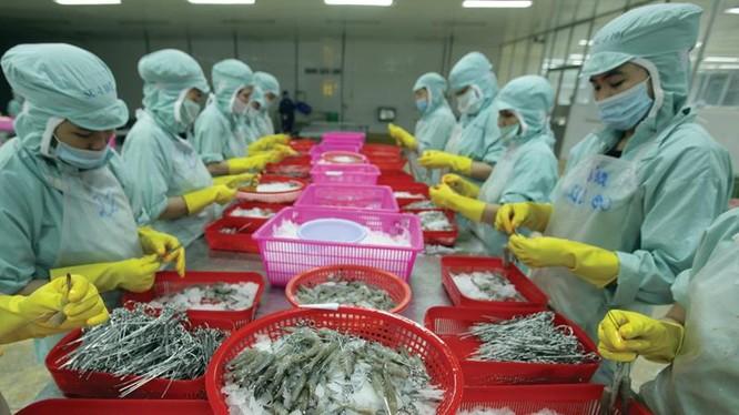 Kim ngạch xuất khẩu của Việt Nam đang bị ảnh hưởng bởi các mặt hàng thủy sản đang giảm sút cả về lượng và giá.