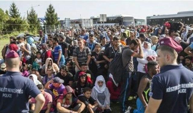 Cảnh sát Hungary và người tị nạn tại cửa khẩu với Croatia. Ảnh: AP