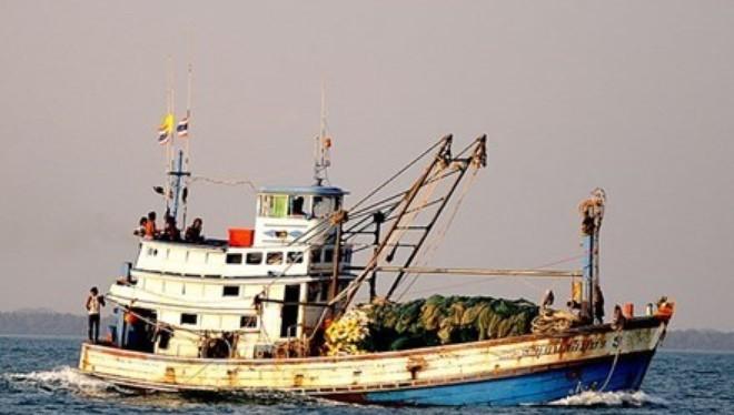 Bắt 3 tàu Thái Lan đánh bắt trái phép trên biển Việt Nam