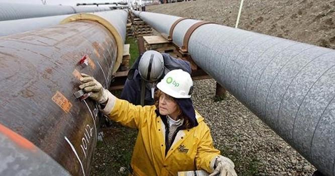 Giá dầu cao nhất kể từ tháng 7 nhờ chứng khoán Trung Quốc
