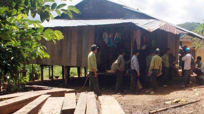 Gỗ lậu phát hiện tại xã Trà Bui - Ảnh: C.T.V