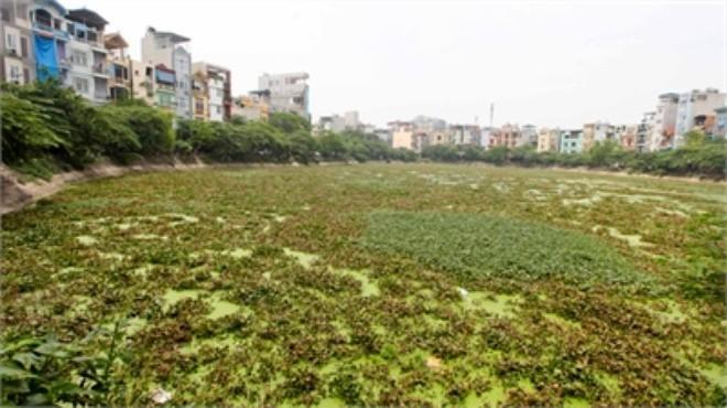 Hà Nội mất 7,2 ha mặt hồ trong 5 năm
