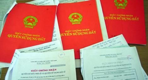 TP.HCM: Trả gần 2.000 hồ sơ nhà đất vì cán bộ sai sót