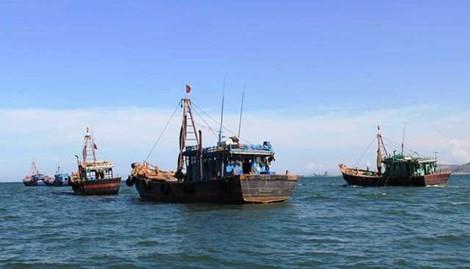 Việt Nam cam kết xóa bỏ trợ cấp trong đánh bắt cá, minh bạch mọi dữ liệu liên quan đến đánh bắt, bảo vệ môi trường. Ảnh: Đ.TRUNG