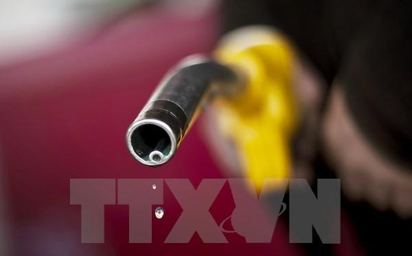 UAE duyệt loạt sáng kiến hơn 80 tỷ USD cho thời kỳ hậu dầu mỏ