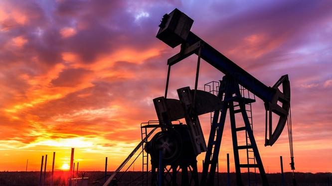 Ngân hàng Goldman Sachs và OPEC vừa có cùng nhận định về thùng dầu giá 20 USD vào năm sau - Ảnh: Shutterstock