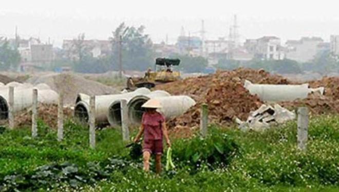 Nhiều diện tích đất nông nghiệp bi lấy làm đất dự án rồi bỏ không lãng phí.