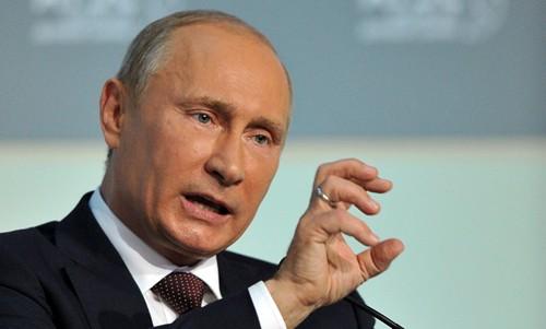 Tổng thống Putin đã có những phản ứng mạnh mẽ sau khi chiếc Su-24 bị bắn rơi. Ảnh: Sputnik
