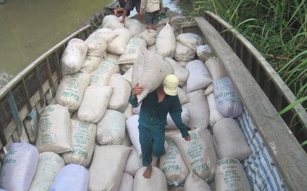 Dù rớt giá, gạo vẫn là một mặt hàng xuất khẩu chủ lực của Việt Nam