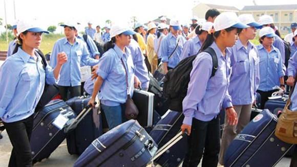 Vụ khách 'mất tích' ở Hàn Quốc: Không ảnh hưởng tới xuất khẩu lao động