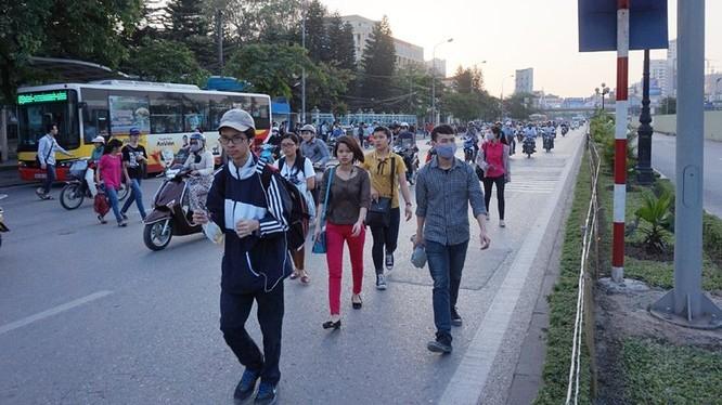 Thản nhiên bách bộ giữa lòng đường tuyến phố Cầu Giấy đoạn qua bến trung chuyển xe buýt gần cổng trường Đại học Giao thông. Ảnh: Lê Anh Dũng