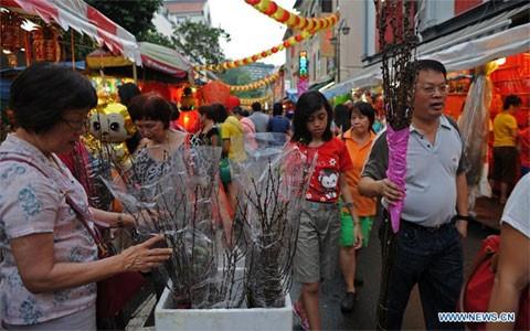 Người dân Singapore đi mua sắm đồ Tết tại Chinatown