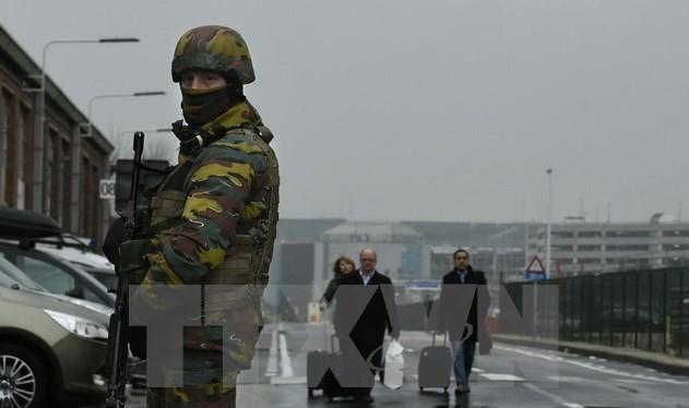 Lực lượng an ninh Bỉ gác trên tuyến đường bên ngoài sân bay Zaventem, một ngày sau vụ đánh bom kép, ngày 23/3. (Nguồn: AFP/TTXVN