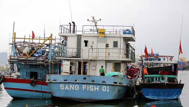 Tàu cá Sang Fish 01 neo đậu hơn 1 năm nay ở âu thuyền Thọ Quang chờ trả lại nơi sản xuất