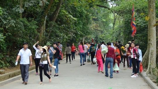 Đường lên đền Thượng- Đền Hùng (Phú Thọ). Ảnh: Nguyễn Hưởng