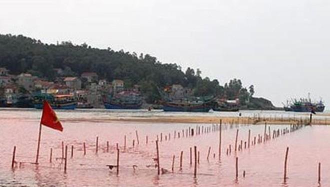 Thủy triều đỏ xuất hiện ở Nghệ An