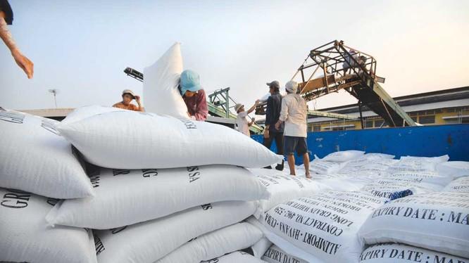 Hiệp hội Doanh nghiệp tỉnh Tiền Giang kiế nghị thay đổi Nghị định 109 về kinh doanh xuất khẩu gạo thuận theo yếu tố thị trường